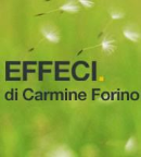 Effeci di Carmine Forino - Visual Basic freelancer Corsico