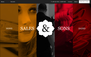 Sales & Sons