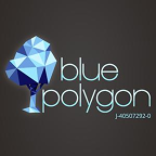 Blue Polygon - E-Commerce freelancer Carabobo