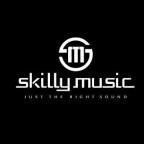 Skilly Music - E-Commerce freelancer Enzkreis