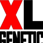 XL Genetic - C freelancer Asturias