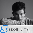 SEOBILITY - Flash Design freelancer Minsk
