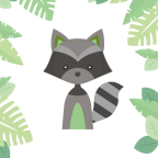 Raccoon Visual Studio - E-Commerce freelancer Balearen