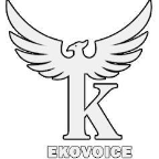 ekovoice - HTML freelancer Gouvernement tunis
