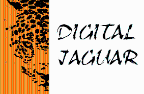 Digital Jaguar - Datenstrukturen freelancer Mexiko