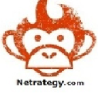 Netrategy - Symfony freelancer West bengal